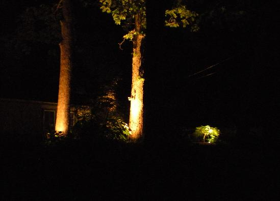 Low Voltage Landscape Lighting For Trees : Low voltage landscape lighting innovative horticultural